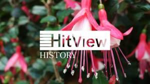 HV23H-Blumenwalzer_ohne-Play_thumbnail